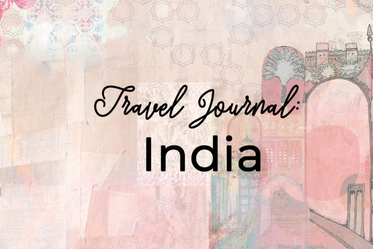 Travel Journal: India (III)